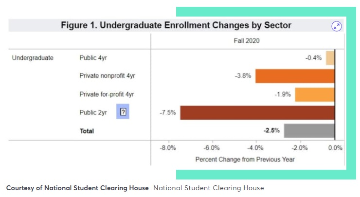 Impact of COVID-19 on student enrollment USA 2020
